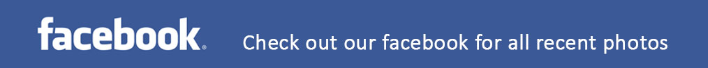 Check-out-our-facebook-page