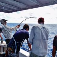 Fishing gear2